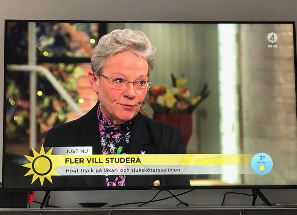 Karin Röding i TV4 morgonsoffan